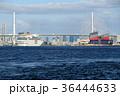 クルーズ 大阪港 入港の写真 36444633