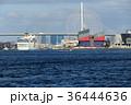クルーズ 大阪港 入港の写真 36444636