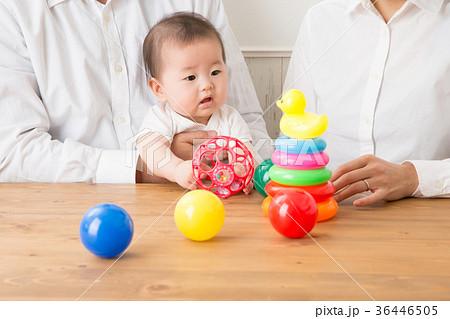 おもちゃで遊ぶ赤ちゃん(真顔) 36446505