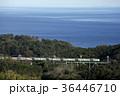 踊り子 列車 伊豆急行の写真 36446710
