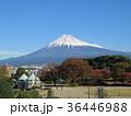 青空 富士山 秋の写真 36446988