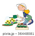 花にジョウロで、水をかける女性。 36448081