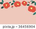 椿 花 背景のイラスト 36456904