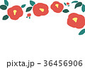 椿 花 背景のイラスト 36456906