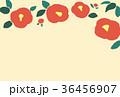 椿 花 背景のイラスト 36456907