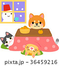 コタツに入る犬と猫 36459216