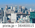 東京 新宿 風景の写真 36460015