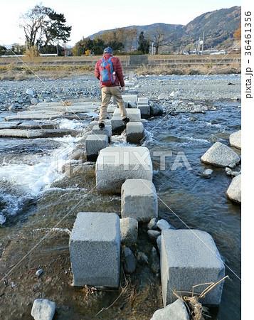 増水した時は通れないピョンピョン橋 36461356