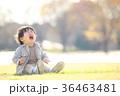 泣く子ども 36463481