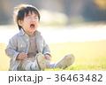 泣く子ども 36463482