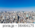 東京シティビュー 青空と都市風景 36464175