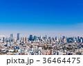 東京 風景 都会の写真 36464475