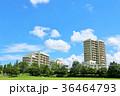青空 マンション 雲の写真 36464793