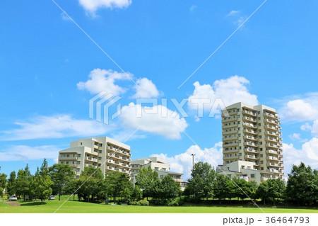 爽やかな青空と街のマンション 36464793