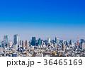 東京 風景 都会の写真 36465169