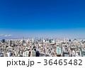 東京シティビュー 青空と都市風景 36465482