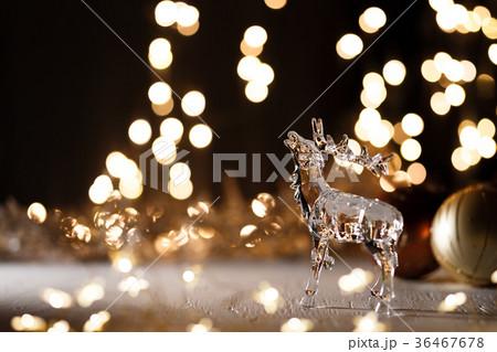 クリスマス イルミネーション 36467678