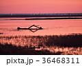 夕焼け 野付半島 北海道の写真 36468311