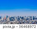 東京 風景 都会の写真 36468972