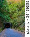 【静岡県】旧天城トンネル 河津側 36469359