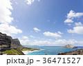 ハワイ マカプウ 風景の写真 36471527