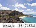 ハワイ マカプウ 風景の写真 36471538