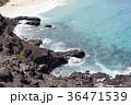 ハワイ マカプウ 岩の写真 36471539