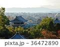 京都 金戒光明寺 寺の写真 36472890