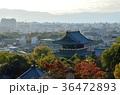 京都 金戒光明寺 寺の写真 36472893
