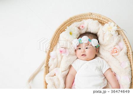 クーハンに入った赤ちゃん 36474649