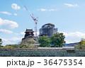 熊本城の修復工事 36475354