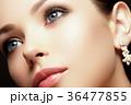 女性 メス 顔の写真 36477855