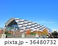 武蔵野の森総合スポーツプラザ 調布市 36480732