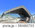 武蔵野の森総合スポーツプラザ 調布市 36480733