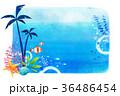 undersea world 009 36486454