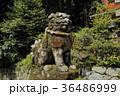 高天彦神社 狛犬 36486999