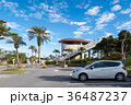 美ら海水族館 駐車場 沖縄の写真 36487237