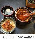 名古屋 うなぎ丼 観光 36488021