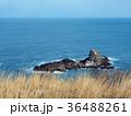 小樽の海 トド岩 36488261