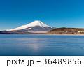 富士山 晴れ 山中湖の写真 36489856