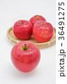 りんご リンゴ 果物の写真 36491275