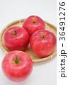りんご リンゴ 果物の写真 36491276