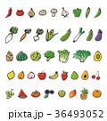 手描きの野菜と果物スケッチイラスト 36493052