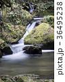 白糸の滝 渓谷 36495238
