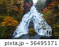 【紅葉見頃】湯滝の紅葉(湯の湖) 36495371