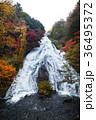 【紅葉見頃】湯滝の紅葉(湯の湖) 36495372