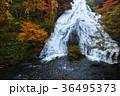 【紅葉見頃】湯滝の紅葉(湯の湖) 36495373
