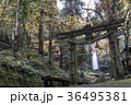 白糸の滝 36495381