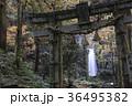 白糸の滝 36495382