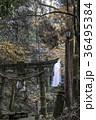 白糸の滝 36495384